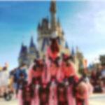 迷惑すぎる 「インスタ映え」 …シンデレラ城で組体操